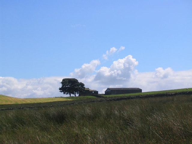 Thruscross Rocking Moor