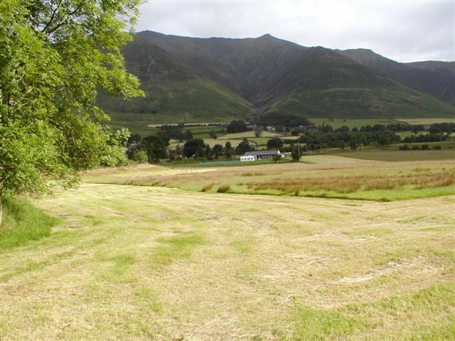 Newly Mown Hay Meadow, Threlkeld