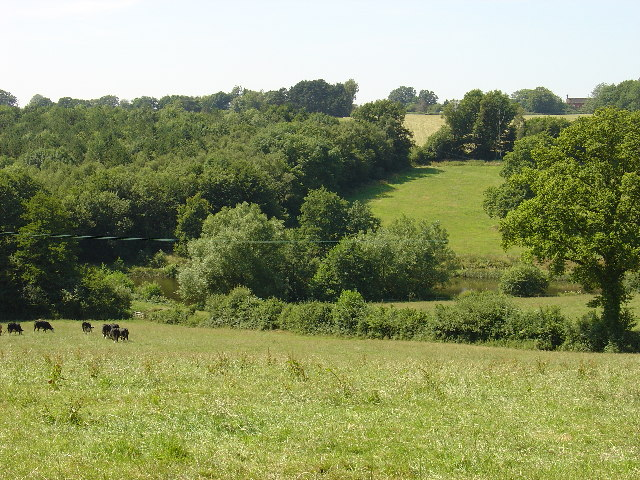 Farmland below Latchetts, Near DaneHill, East Sussex