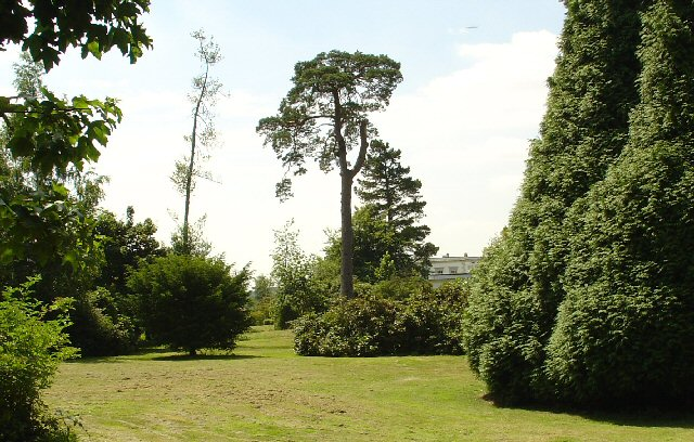 Ornamental Parkland, Buxted Park Estate, Buxted, East Sussex