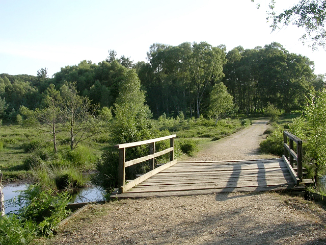 Footbridge at Woodfidley Passage, New Forest