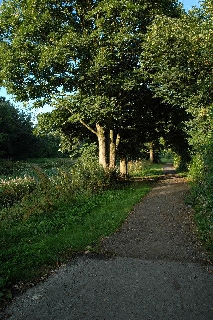 Walk by the stream, Woolston
