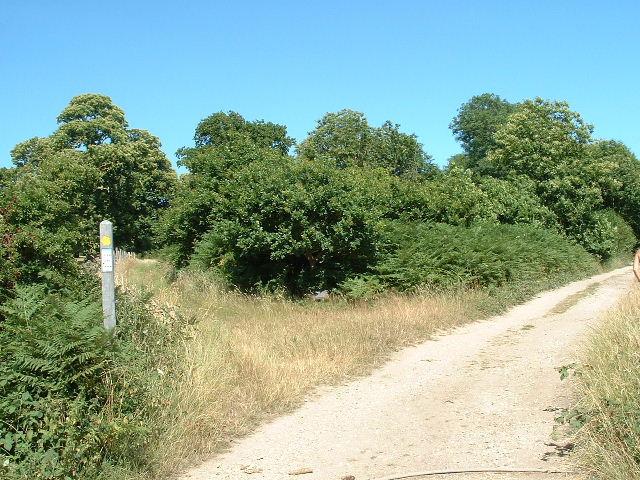 Clapham pathways