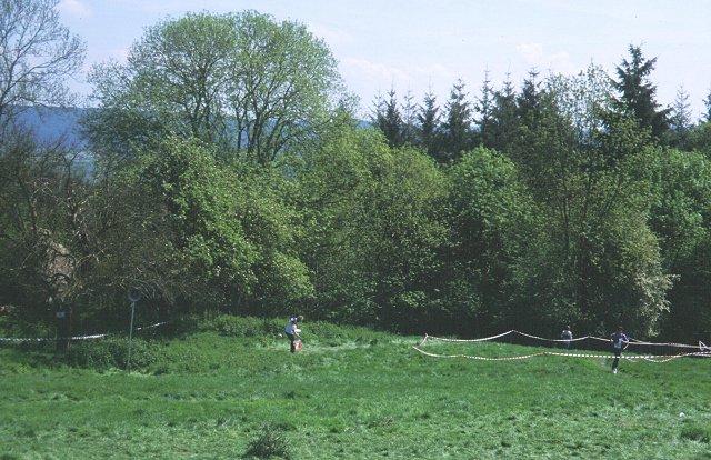 Penyard Park
