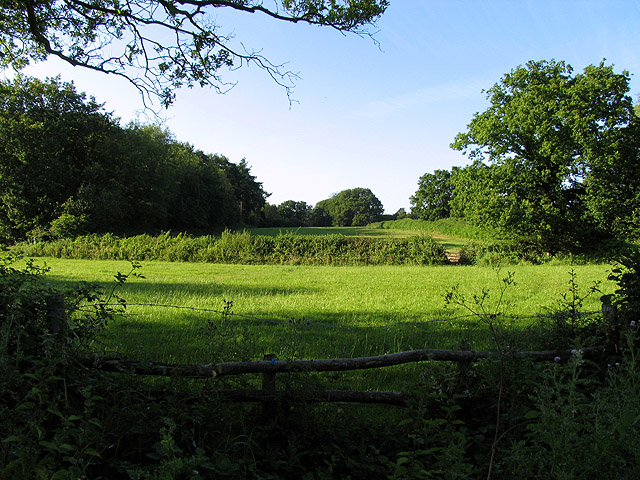 Field near Tadley Hill