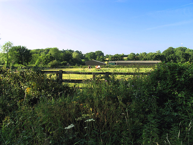 Farmland and Paddock near Tadley