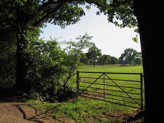 Farmland at Baughurst/Tadley