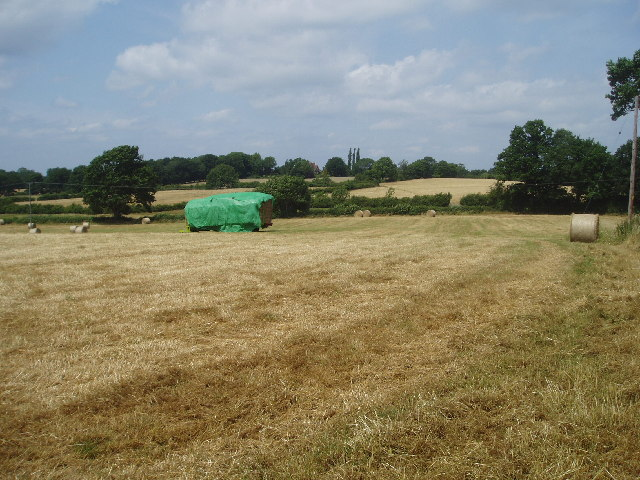 Fields behind Wivelsfield