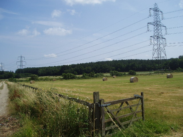 Meadow and Pylons