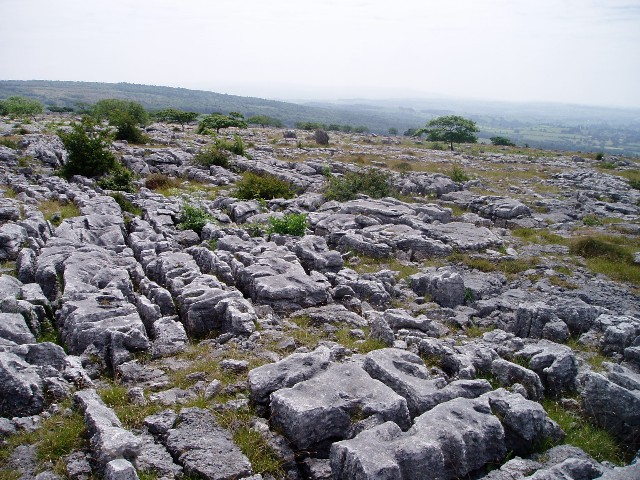 Limestone pavement, Holmepark Fell