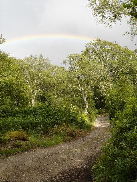 Rainbow over Kernsary track at Inveran