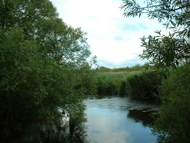 River Test, Nursling, Southampton