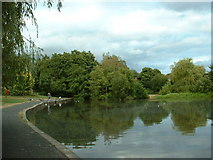 SU3816 : Pond off Baker's Drove, Rownhams, Southampton by GaryReggae
