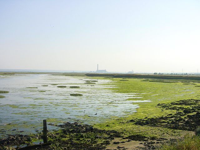 Stoke Saltings & Kingsnorth Power Station