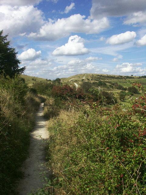 Path towards Ivinghoe Beacon