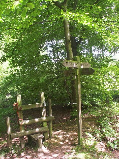 Bridle/footpath crossroads, Wigginton