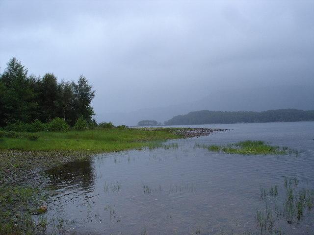 Shoreline Loch Maree