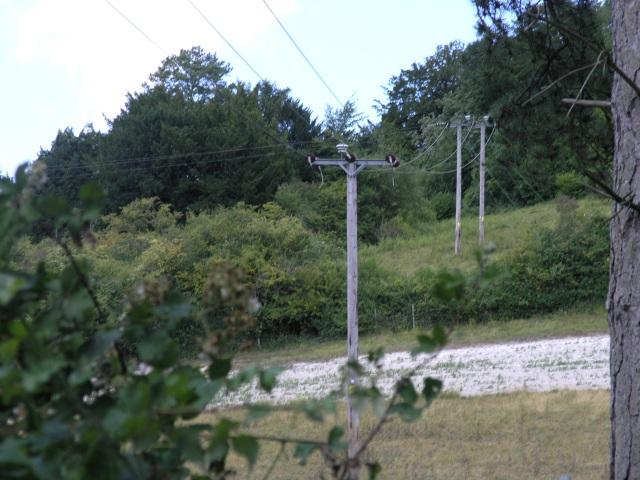 Electricity Pole near Betchworth