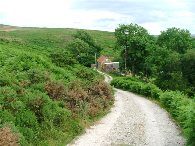 Public Bridleway Leading to Cottages at Moorside