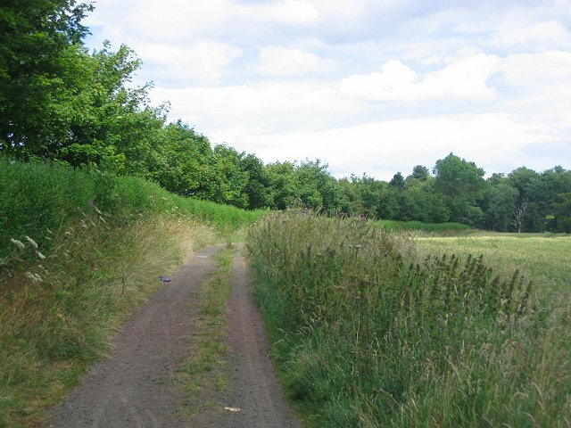 Farm track, Rosewell