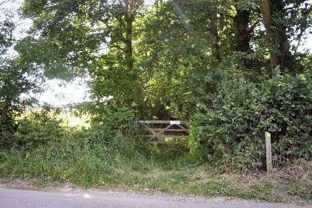 Long Wood, Hawstead