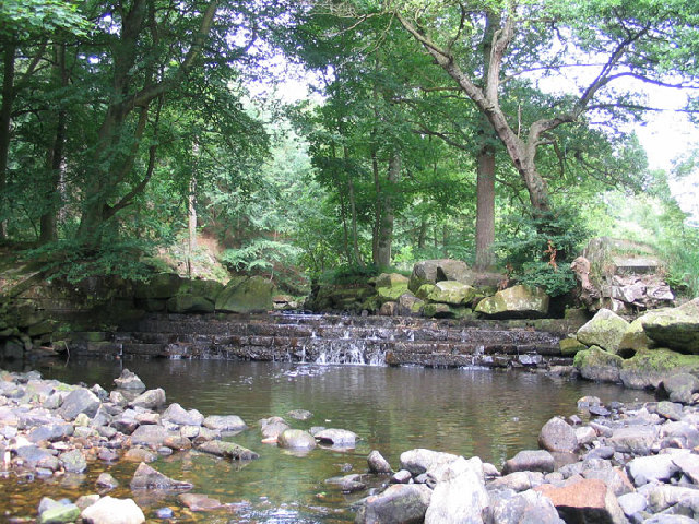 Weir on the River Washburn