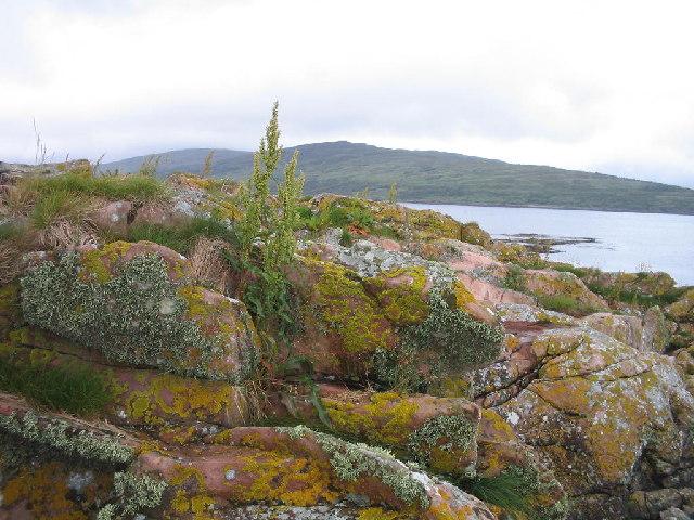 Lichen covered rocks Loch Scresort