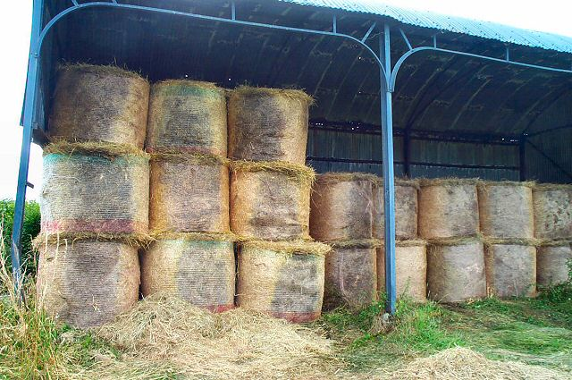 Hay stored near Venn, South Devon