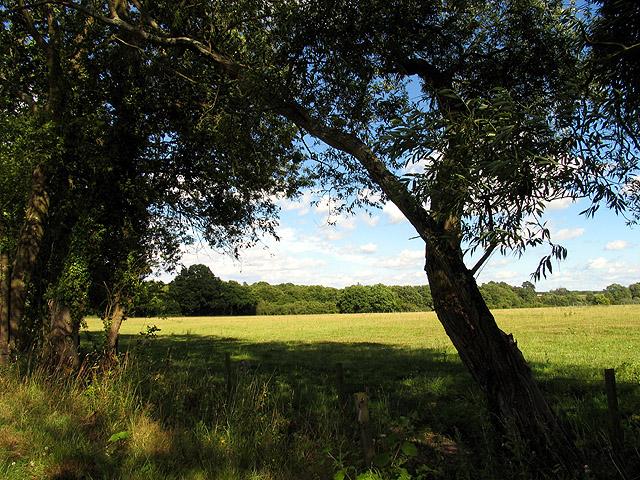 Farmland near Brocks Green