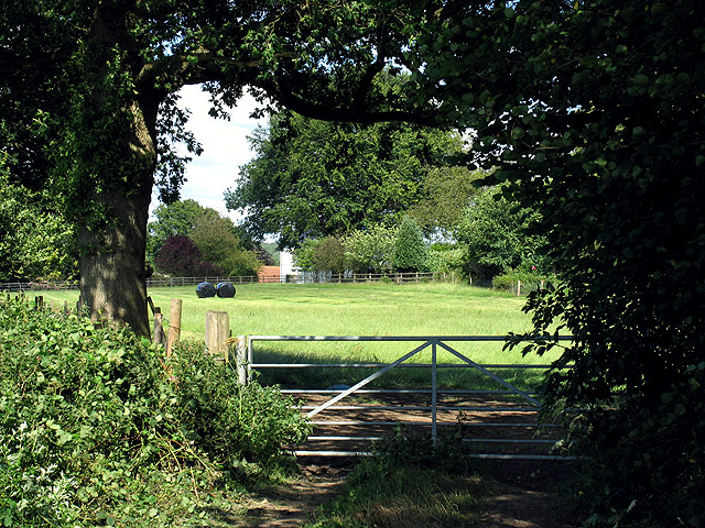 Farm Gate: North Echinnswell