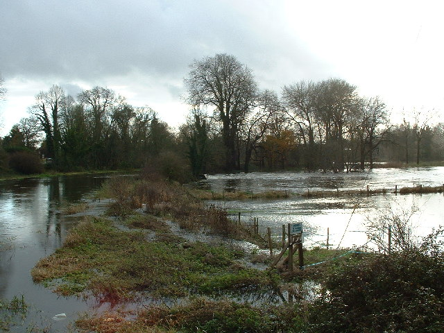 River Avon at Ibsley
