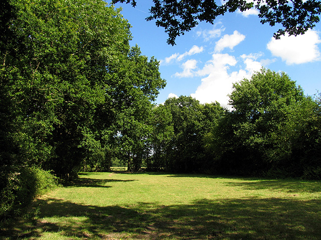 Field near Ecchinswell