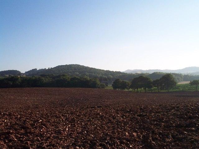 Woodfield's Farm