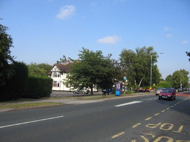 Binley Woods, near Coventry