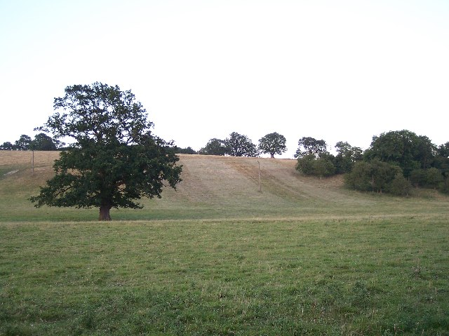 Eastnor Parkland