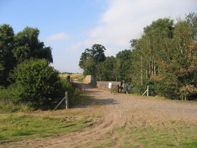 Footpath to Brandon Wood