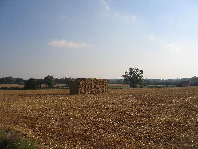 Straw bales, Brandon Lower Farm