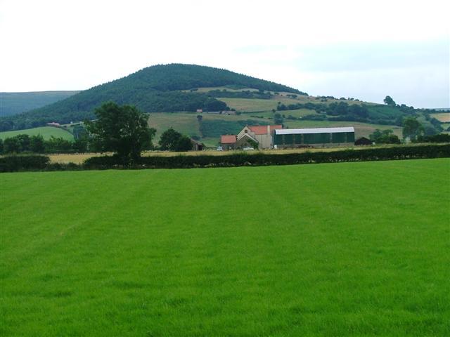 Faceby Grange Farm