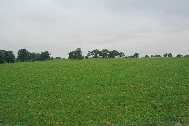Open Pasture, Croft.