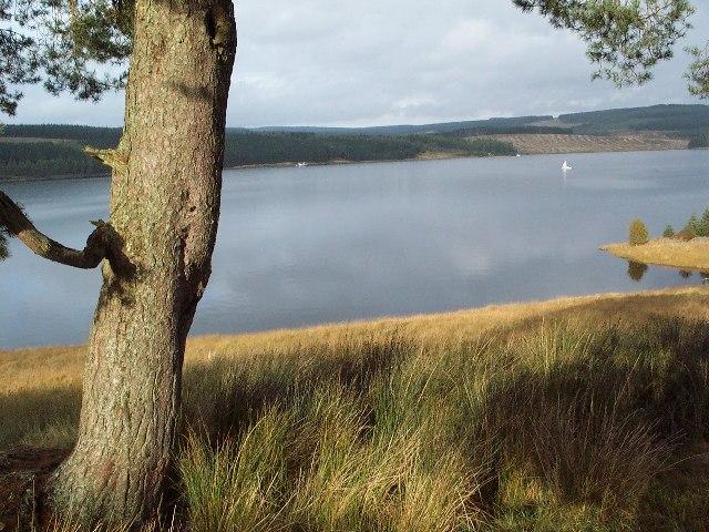 Kielder Reservoir from Bull Crag Peninsula