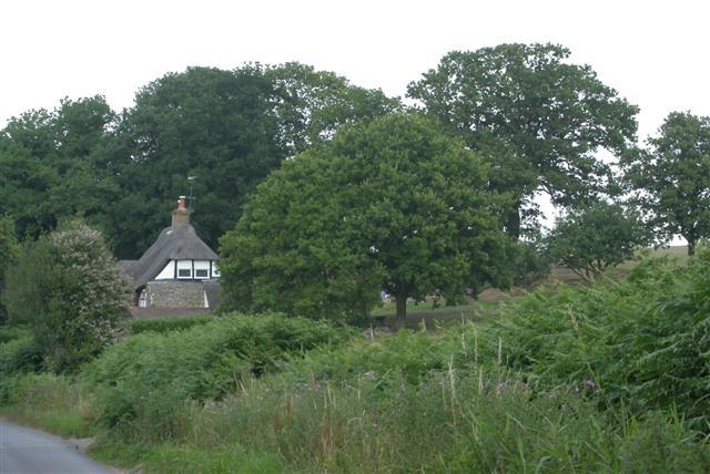 Frensham Lane