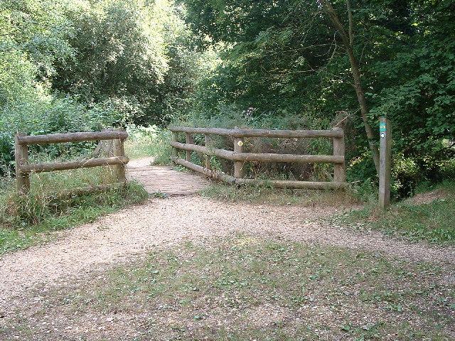 Castleman Trailway in Ferndown Forest