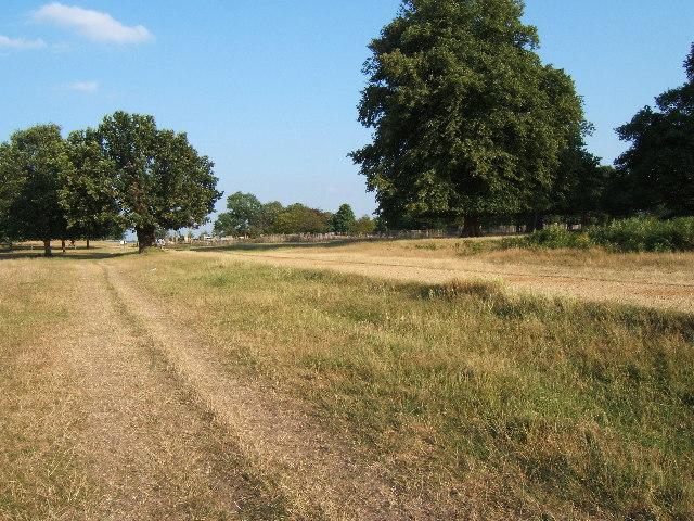 Track near Pen Ponds, Richmond Park