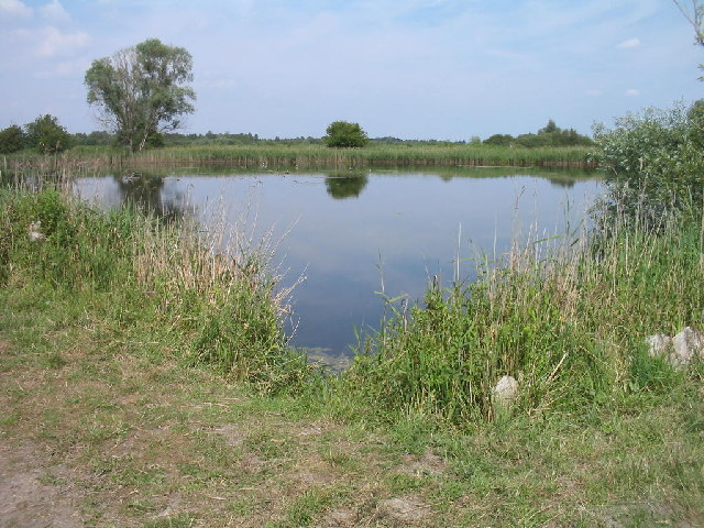 Pool on the edge of Burwell Farm Fen