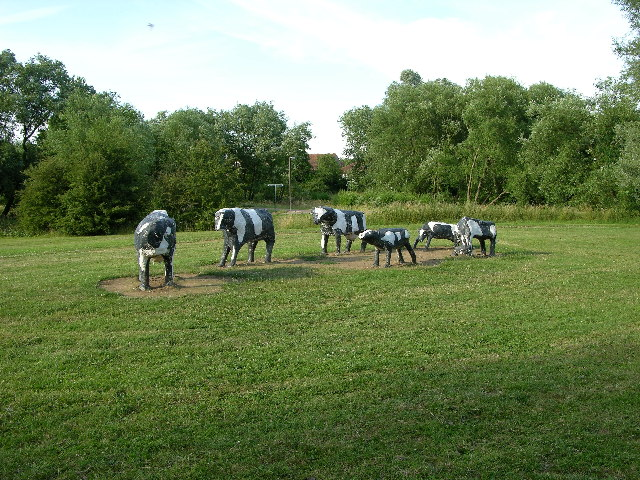 Concrete Cows