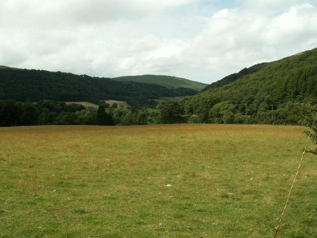 Pasture near Cwmere