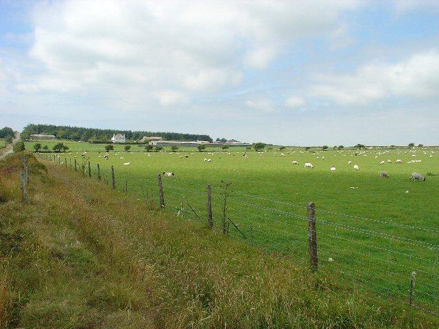 Roughtor Farm, Near Camelford, Cornwall