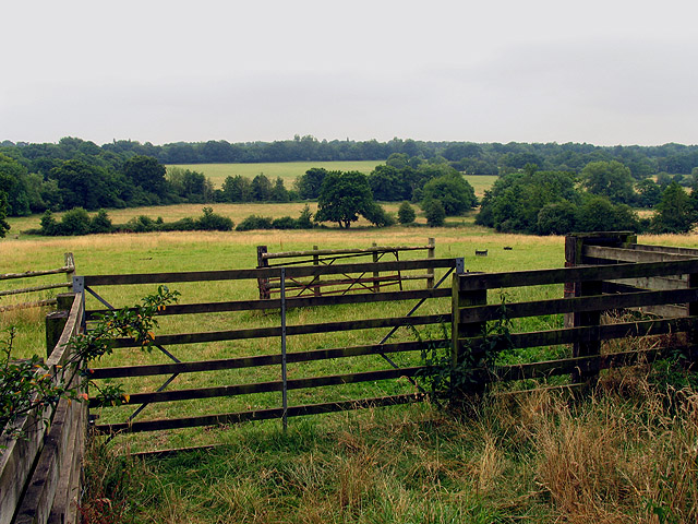Valley from Thornford Road near Crookham