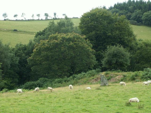 Standing stone, Cwmere