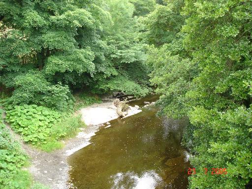 River Elwy